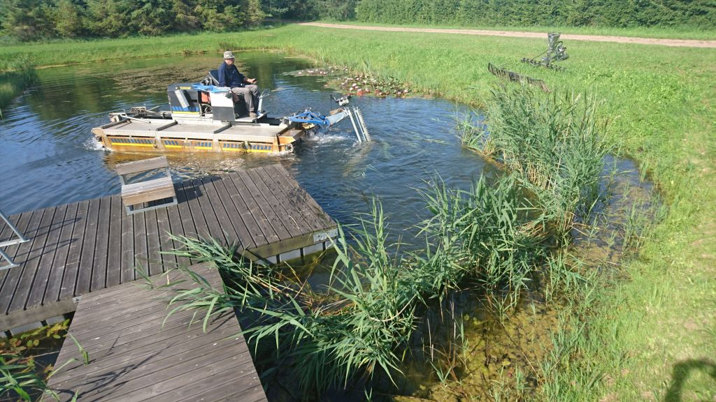 The mowing, collecting and shore storage of aquatic weed from ponds, lakes, rivers and bays
